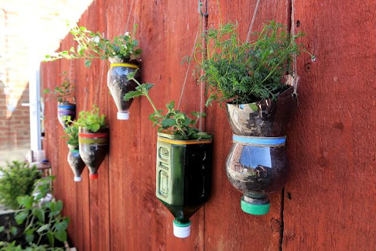 Save your plastic bottles – you're gonna need them for your garden