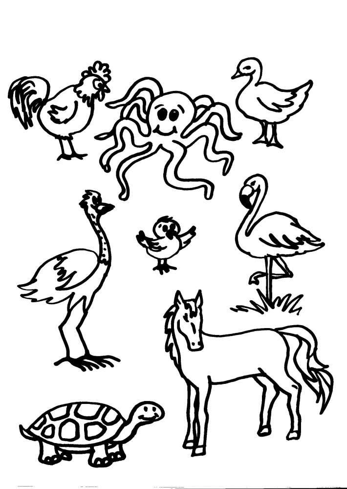 Disegni Animali In Fattoria Da Colorarefattoria Disegno Fattoria
