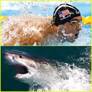 Michael Phelps Raced Computer Generated Shark & Fans Weren't Happy - Read the Tweets