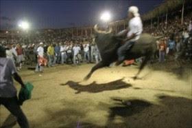 Nicaragua también prohíbe las corridas de toros
