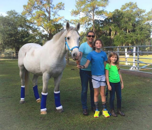Standing Ovation by Ovation Riding: L.E.A.R.N. Horse Rescue | HORSE NATION