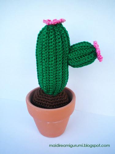 Cactus by Deni83