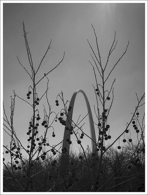 Gateway Arch 2014-03-06 1