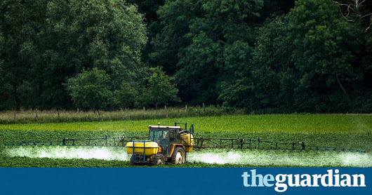 UN experts denounce 'myth' pesticides are necessary to feed the world | Environment | The Guardian