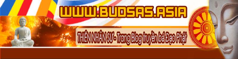 Blog Đạo Phật - Buddha Sāsana, Phật giáo nguyên thủ CON ĐƯỜNG GIÁC NGỘ GIẢI THOÁT