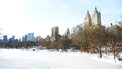 Central park in snow3