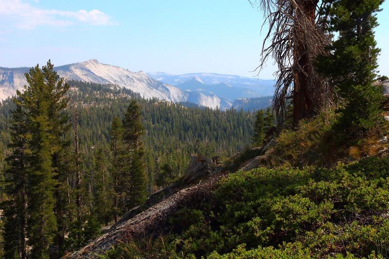 IMG_8645 May Lake Trail
