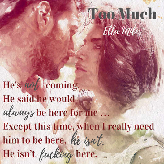 Book Blitz:Too Much