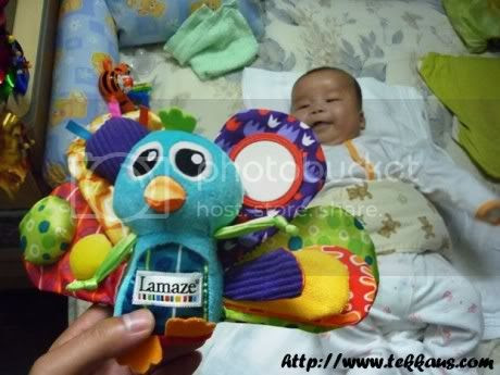 Learning Curve Toy,Lamaze Toy,Jacque the Peacock