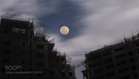 Moon over the Concrete Jungle