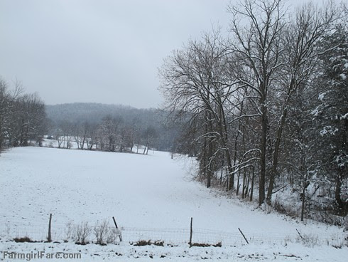 Hello spring (1a) - Looking across the hayfield while leaning out an upstairs window - FarmgirlFare.com