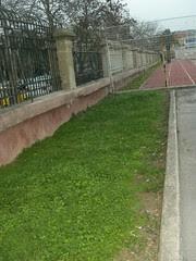 horta at the stadium hania chania