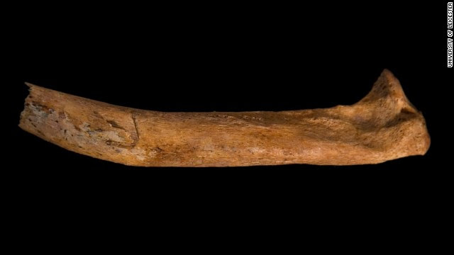 Archaeologists say it appears Richard's corpse may also have been mistreated. The image shows a cut mark on the right rib.