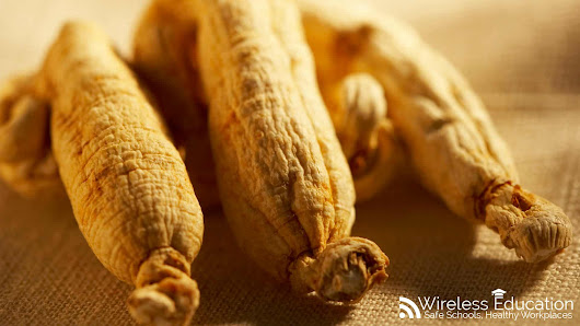 Red Ginseng - Neuroprotective effects from microwave radiation