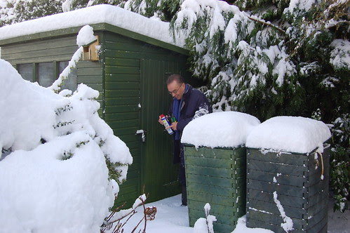Sunniside snow Jan 10 no 8