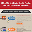 Which SSL Should You Buy For Your E-commerce Business?