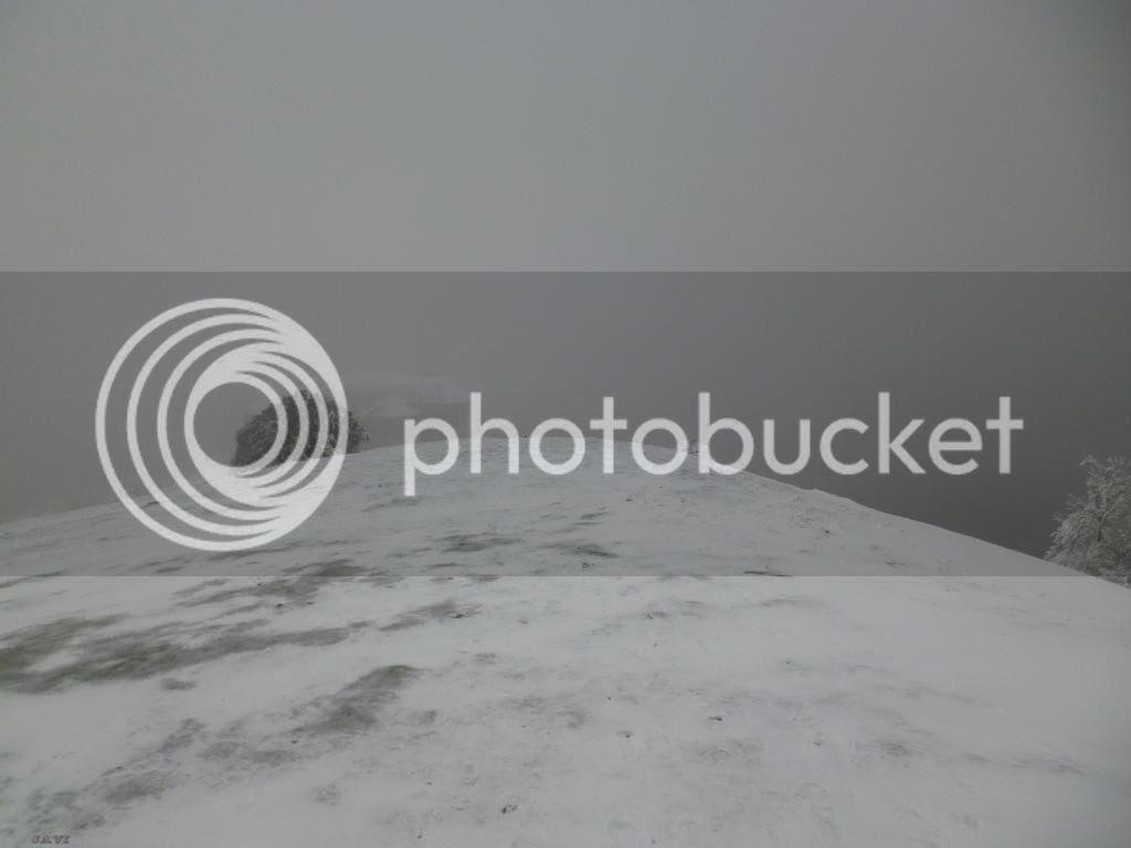photo P1040801_zps996bfad0.jpg
