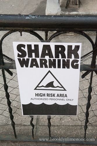 SharknadoHouse20131014-6-2