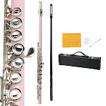 16 Closed Hole C Tone Pink Flute with Cace for Beginner Student