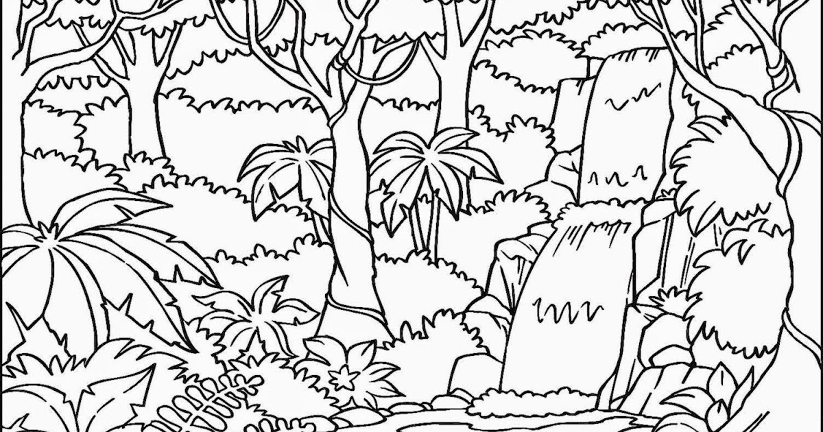 Rainforest Color Page - Bilscreen