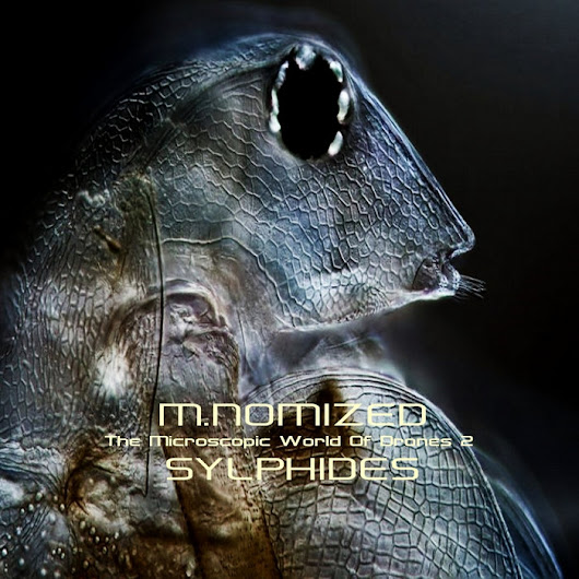 The Microscopic World Of Drones vol 2 GHGR 023117, by M.Nomized - Sylphides