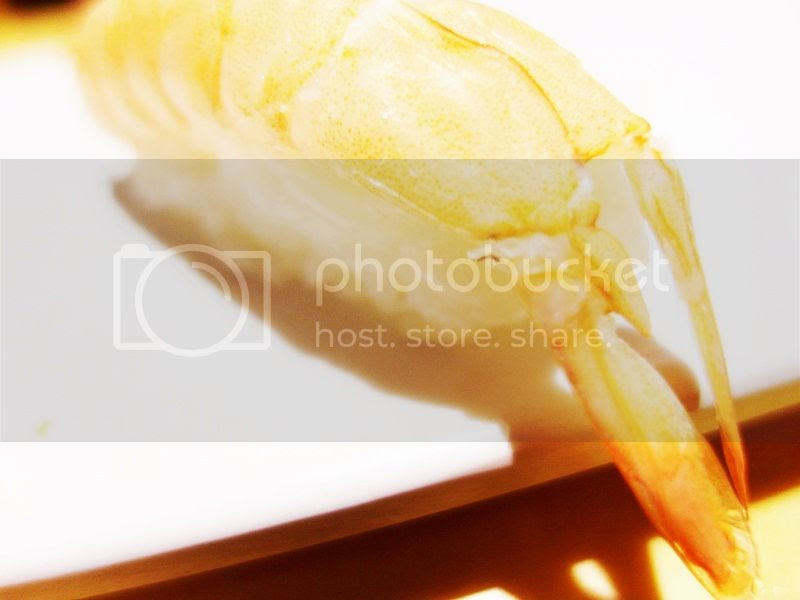 photo 18_zps56e49bbc.jpg