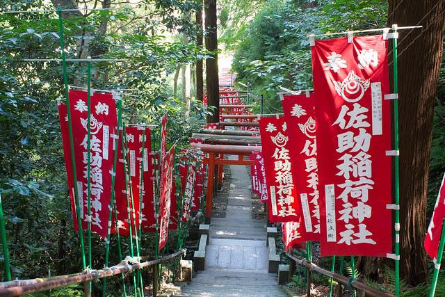 Sasuke Inari
