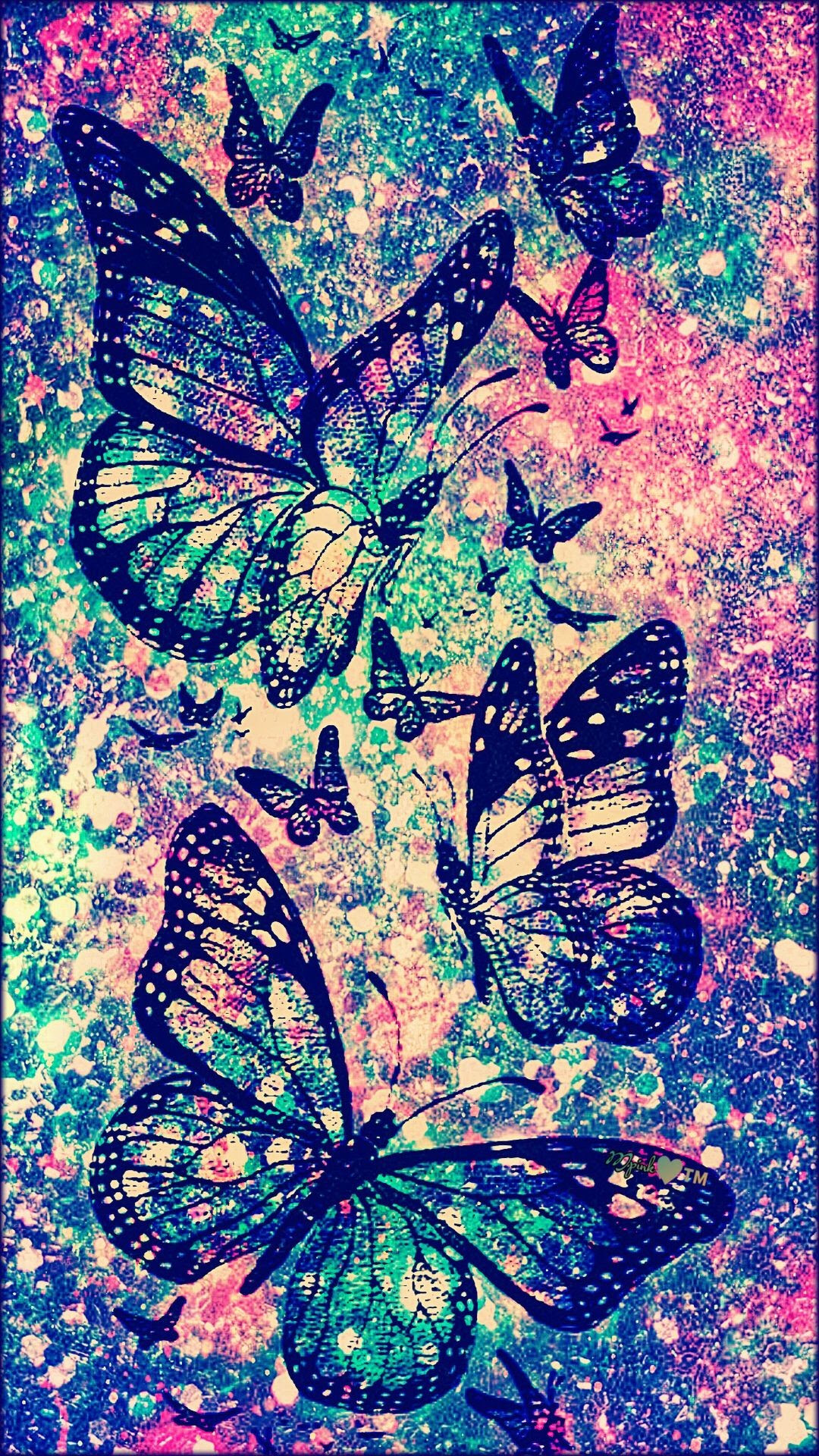 Cute Butterfly Wallpapers (74+ background pictures)