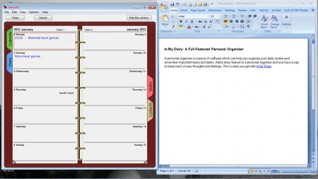 Free Personal Organizer: In My Diary
