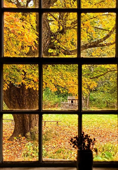 Cogblog A Cognitive Psychology Blog Whats Outside Your Window