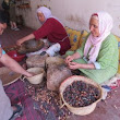 How Argan Oil Improves the Lives of Moroccan Women