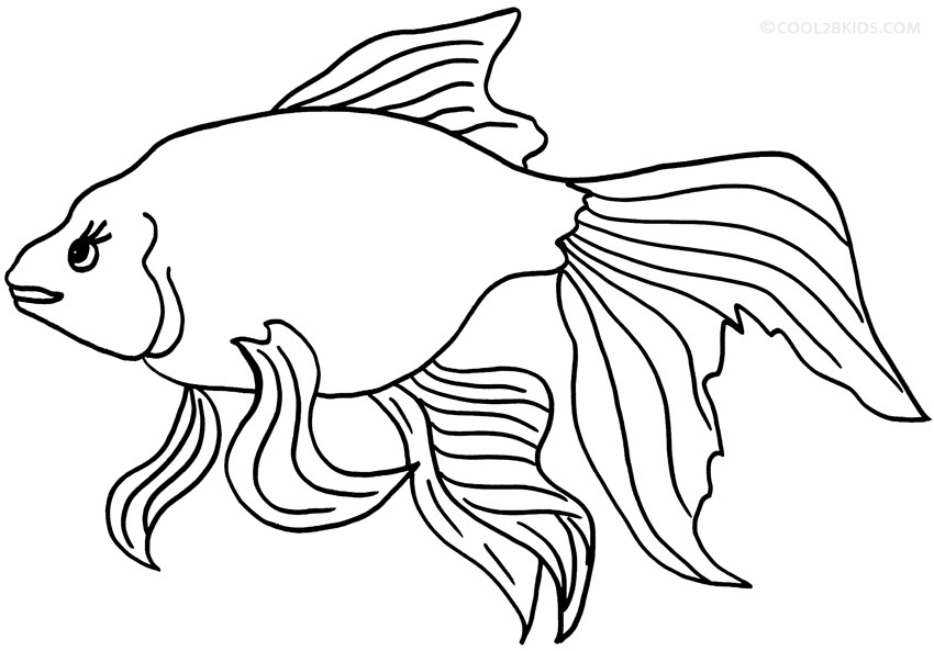 Coloring Pages Of Goldfish at GetColorings.com | Free ...