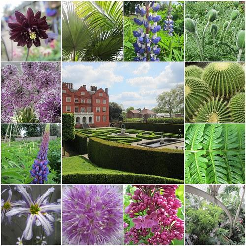 Kew Gardens May 2013