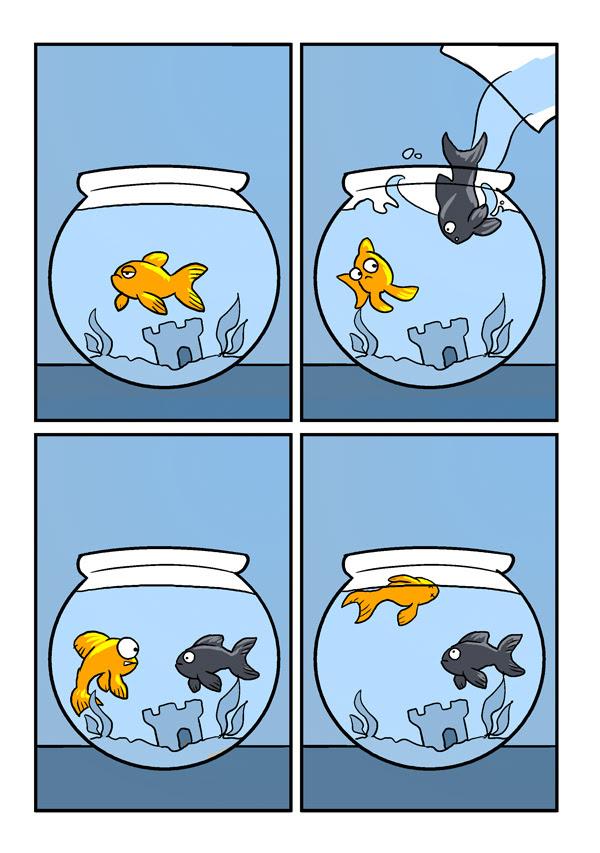 Racist Goldfish