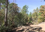 Oklahoma, Latimer  County, 11.76 Acre Stone Creek Phase I, Lot 106. TERMS $240/Month