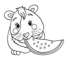 Coloriages Cochon Dinde Coloriages Coloriage à Imprimer Gratuit