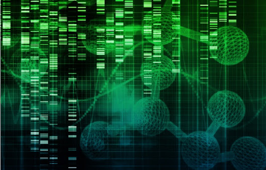 Coming soon: An API for the human genome