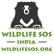 I just donated to Wildlife SOS. Do the same!