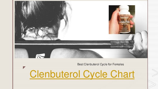 Clenbuterol Cycle Chart
