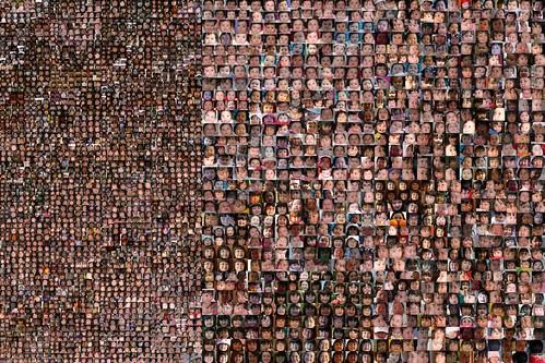 Dova mosaic collage