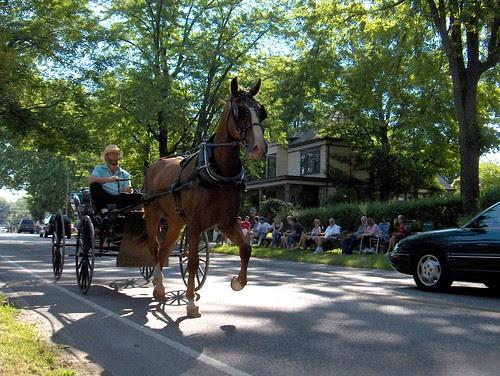 HPIM1287-Amish