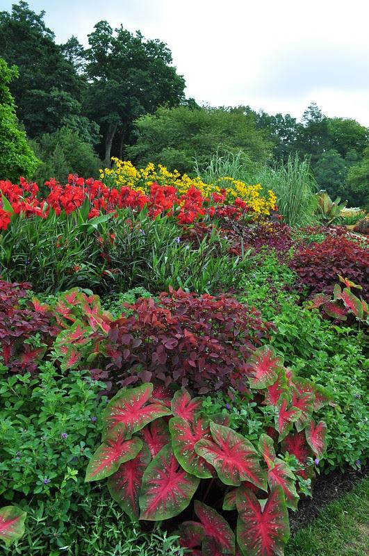Flower Garden Walk (14)