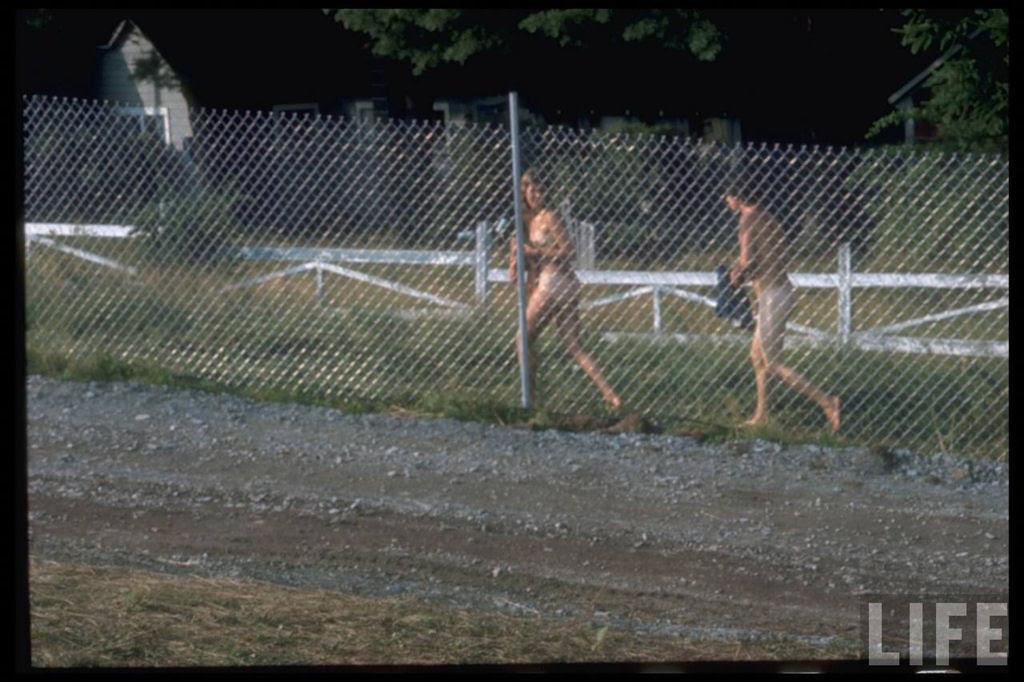 O festival de Woodstock em números e imagens 42