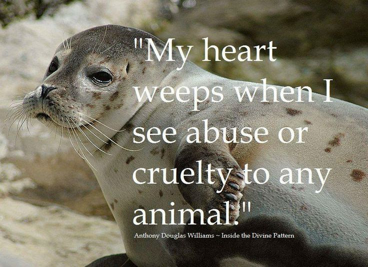 Animal Abuse Quotes By Famous People Crazywidowinfo