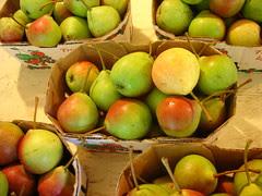pears, Windmill Point Farm