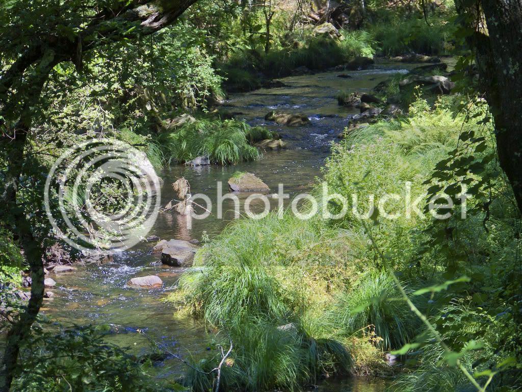 Resultado de imagem para imagens de sítios bonitos
