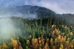 Jesień, Góry, Mgła, Las, Natura