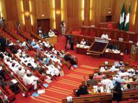 Senate in Nigeria