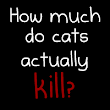 How much do cats actually kill? [Infographic] - The Oatmeal