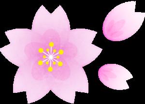 桜のイラスト Penta 登録不要商用フリーのイラスト素材サイト